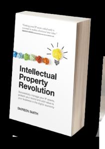 IP-book-211x300